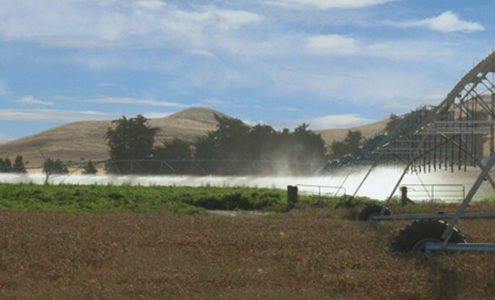 Irrigation system in field