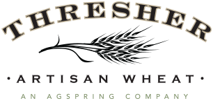 Thresher Artisan Wheat